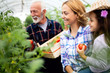 Grandfather growing organic vegetables with grandchildren and family at farm - 254361362