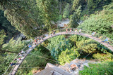 Capilano suspension bridge aerial view, British Columbia, Canada