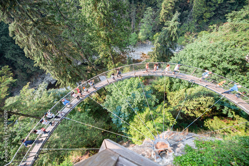 Capilano suspension bridge aerial view, British Columbia, Canada - 254456109