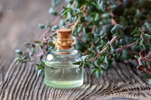 Leinwanddruck Bild A bottle of thyme essential oil with fresh thyme