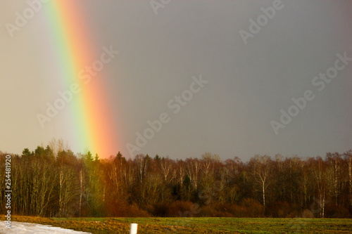 Rainbow over the winter forest closeup © Sergei Timofeev
