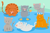 cats or kittens animal characters group