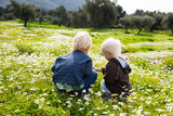 Two Children, Brothers, Sitting In A Daisy Flower Meadow