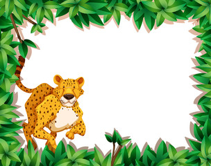 Cheetah in nature scene © blueringmedia