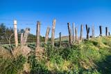 Barbed wire fence in Irish fields