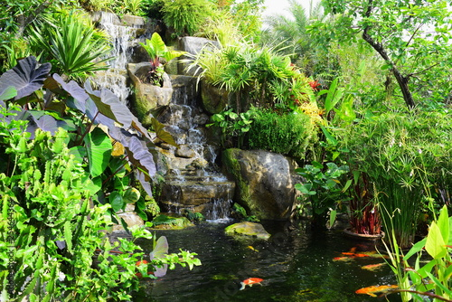 A view of the waterfall built and the fish pond in the beautiful garden. - 254644364