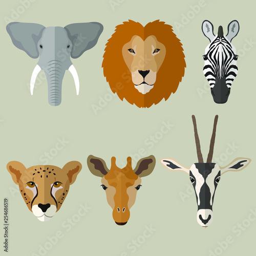 Vector illustration of cartoon animals head