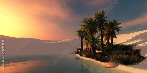 Oasis with palm trees in the sandy desert at sunset, sunrise over the oasis - 254729783