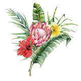 Watercolor tropical flowers bouquet. Hand painted protea, hibiscus, plumeria and palm leaves isolated on white background. Nature botanical illustration for design, print. Realistic delicate plant. - 254735116