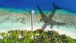 Leinwanddruck Bild - Concept of airplane travel to exotic destination