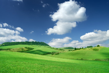 Landscape, view of green rolling fields