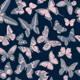 Seamless pattern with hand drawn butterflies - 254893197