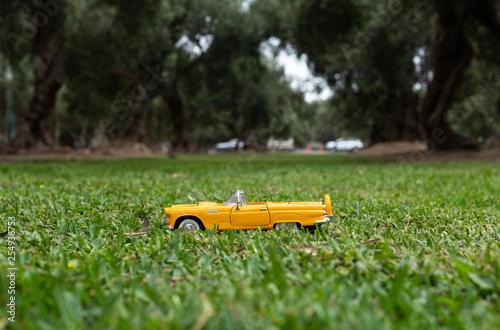 obraz lub plakat Auto en Parque