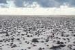 Plaża Morze Kamienie