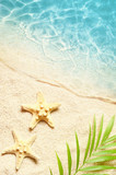 Summer background with green palm leaf and starfish. Beach texture. Copy space.