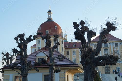 obraz lub plakat Schloss Moritzburg im Winter
