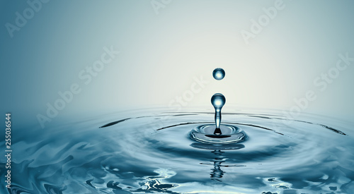 Clear Water drop with circular waves © willyam