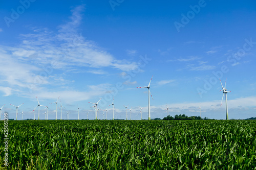obraz lub plakat wind turbines in green field, in Sweden Scandinavia North Europe