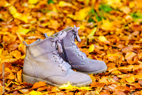 Boots, grey autumn shoes