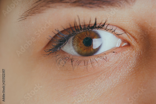 Women's eyes without makeup and makeup, with a lens on the eyeball. Photo eyes macro - 255122387
