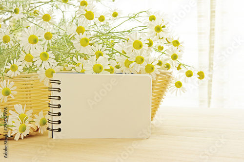 Sketchbook with white flowers