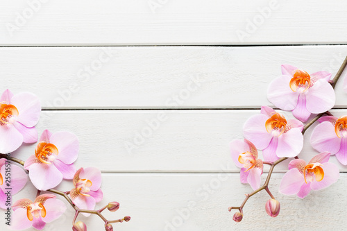 Orchid flower on the wooden pastel background. Spa and wellness scene. - 255155766