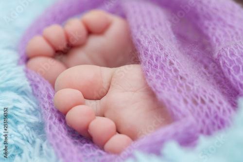 Children's legs in a purple bedspread.