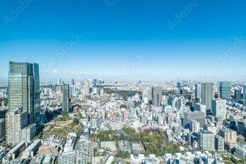 obraz PCV 六本木から見る大都市東京