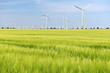 Leinwanddruck Bild - renewable energies - power generation with wind turbines in a wind farm
