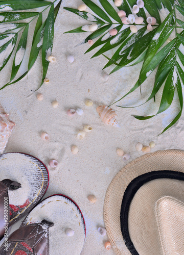 top view on part of hat, flip flops and leaf on sand with seashells