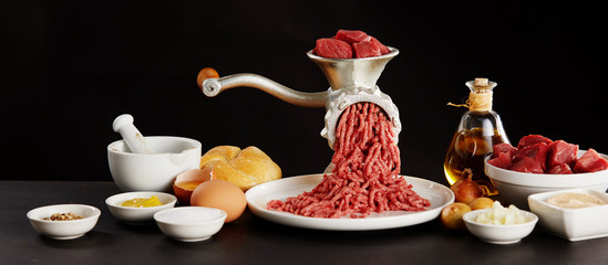Meat minced through grinder and ingredients © exclusive-design