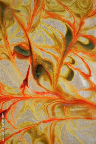 abstract background - 255231102