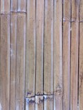 bamboo texture material backgroud pattern line  wood nature
