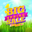 Vector illustration. Spring sale sign with buteerflies on a nature  background.