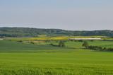 Fototapeta Room - Warmia. Wiosenny krajobraz. Polska © FP Foto