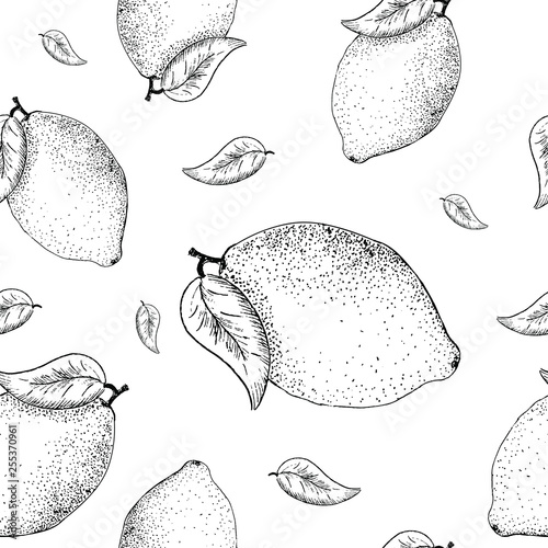 Lemon sketch pattern. Hand painted lemon, seamless pattern on a transparent background. Black seamless vector pattern without background © Татьяна Петрова