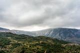 olive plantation on mountain the Crete,Greece
