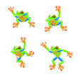 Tree frog Cartoon set. Vector illustration.