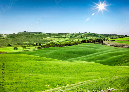 desk of free space for your decoration and landscape of spring Tuscany.  - 255402356