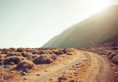 Dirt road rally background