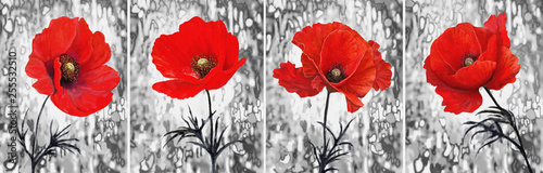 Collection of designer oil paintings. Decoration for the interior. Modern abstract art on canvas. Painting set.  Red poppy. © Erenai