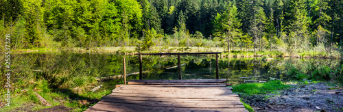 lake in the forest - 255537328