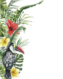 Watercolor tropical flowers and toucan card. Hand painted bird, hibiscus and plumeria isolated on white background. Nature botanical illustration for design, print. Realistic delicate plant. - 255631327