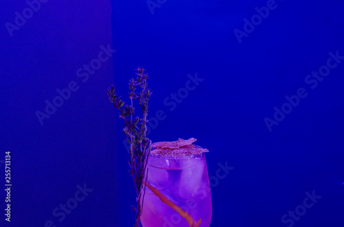 glasses with alcoholic cocktail for a party at the event - 255713134