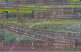Aerial view on multiple crossing of electric train railroad and siding.
