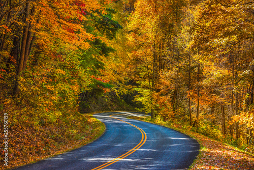 Blue Ridge Parkway near Asheville North Carolina © Kevin