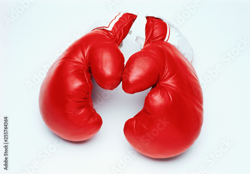 Boxing Gloves, Close-up