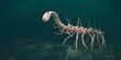 Leinwanddruck Bild - Hallucigenia, prehistoric aquatic animal from the Cambrian Period (3d paleoart illustration)