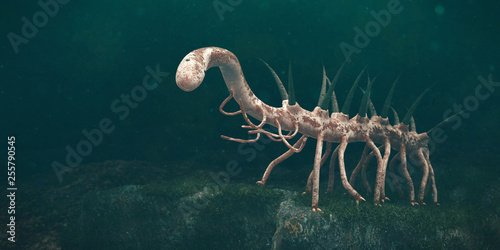 Leinwanddruck Bild Hallucigenia, prehistoric aquatic animal from the Cambrian Period (3d paleoart illustration)