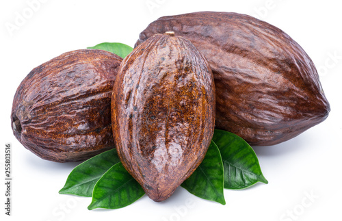 Cocoa pods with cocoa leaves isolated on a white background. © volff